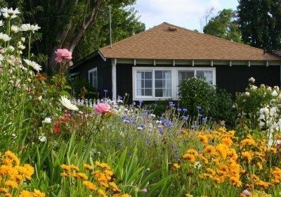 Learn To Plant A Basic English Cottage Garden