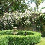 english-garden