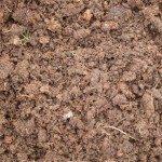 organic-soil