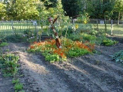 Designing A Vegetable Garden: Pretty Vegetable Garden Ideas