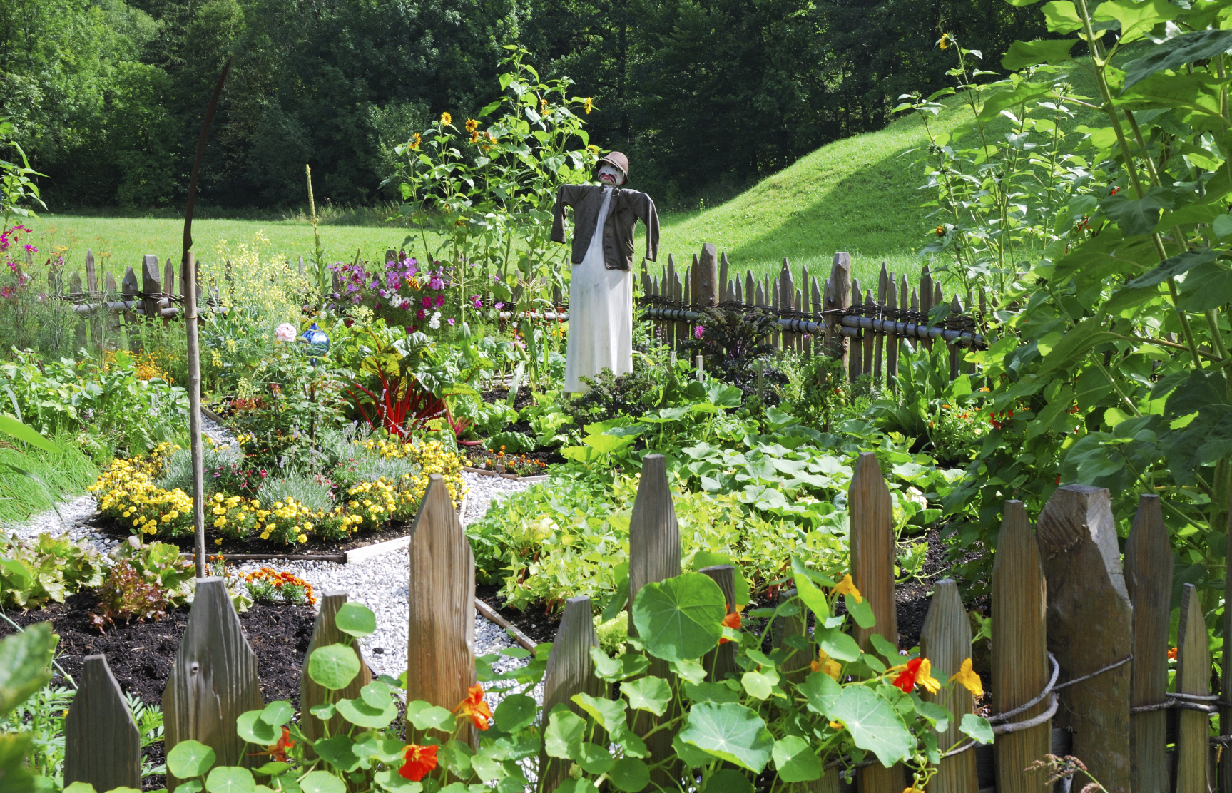 Vegetable Garden Design - Ideas For Designing A Vegetable Garden