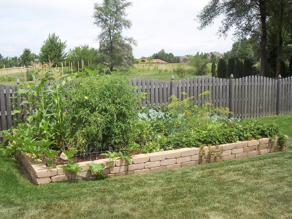 The Layout of Your Vegetable Garden - Tips For Vegetable ... on Backyard Patio Layout id=18560