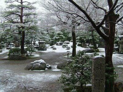 winter-interest
