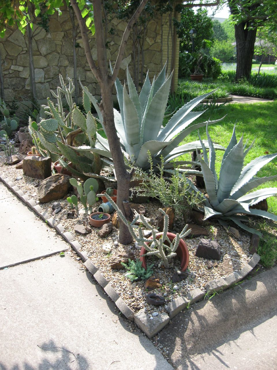 Using Xeriscaping For A Water-Efficient Garden