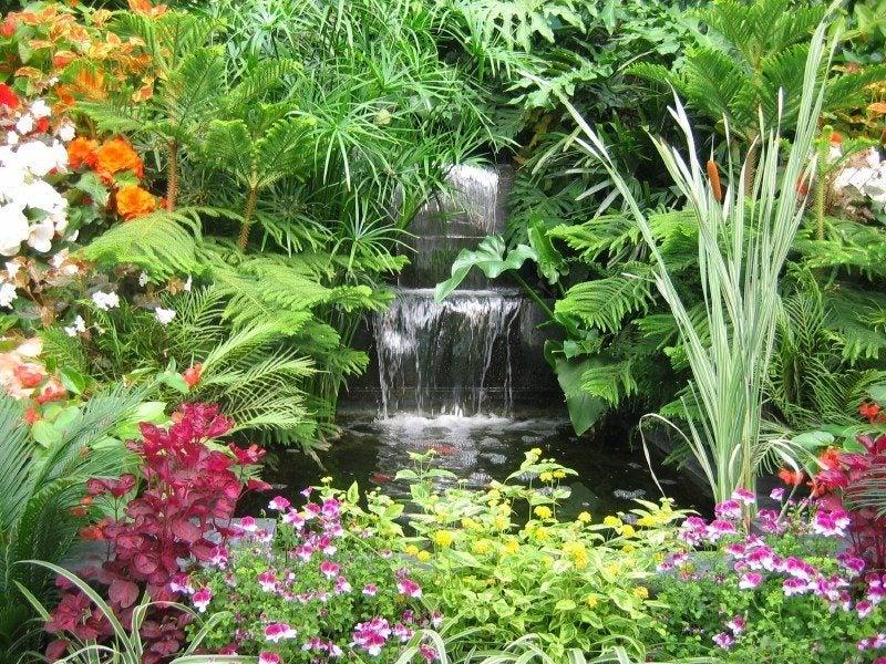 Gardening With Exotics - Gardening Know How