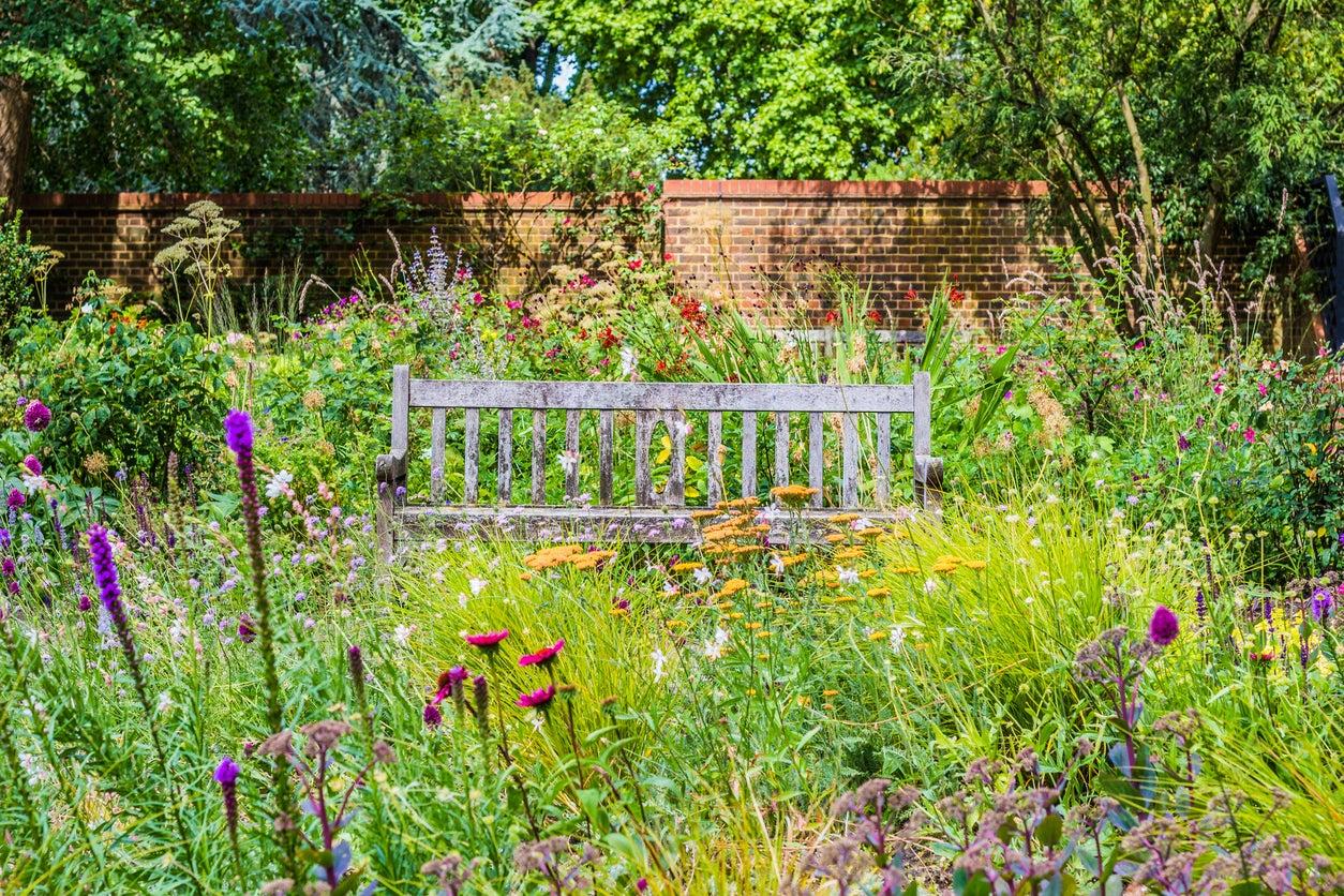 Native Garden Plants How To Design A Native Garden