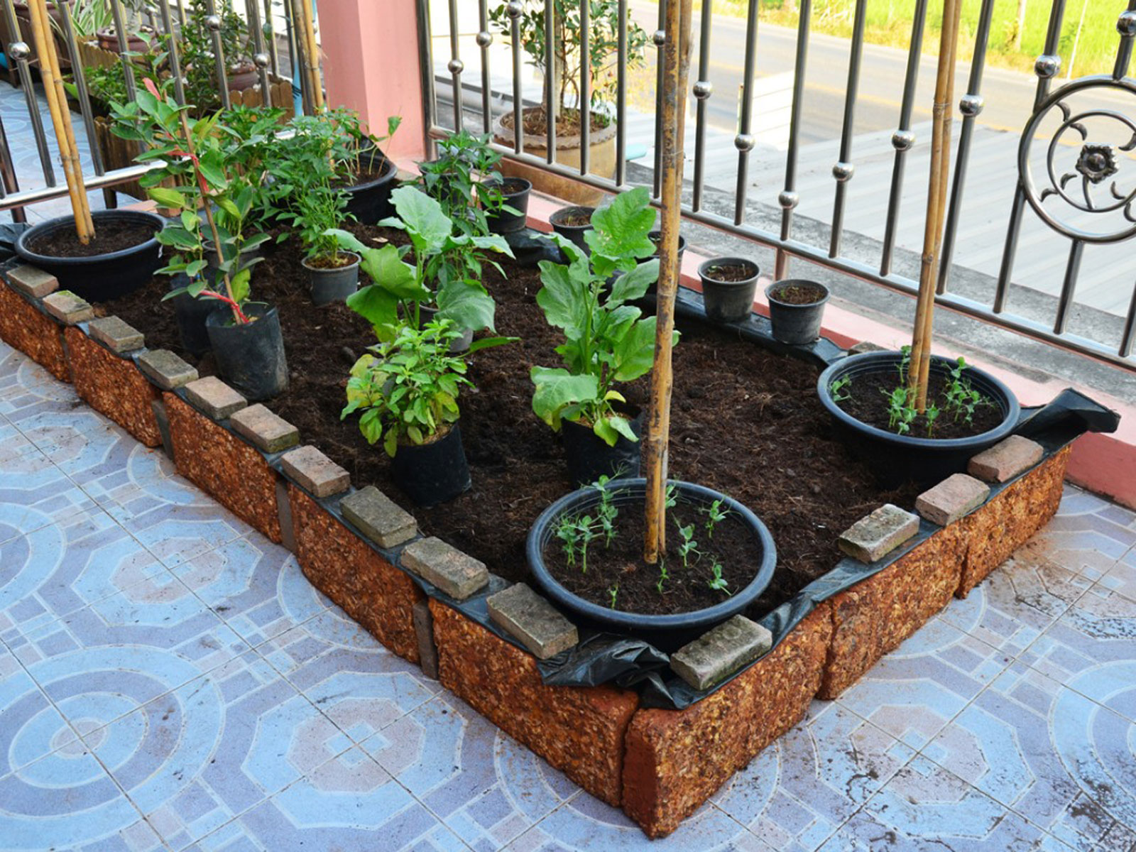 Picture of: Raised Beds For Urban Settings Creating No Dig Garden Beds