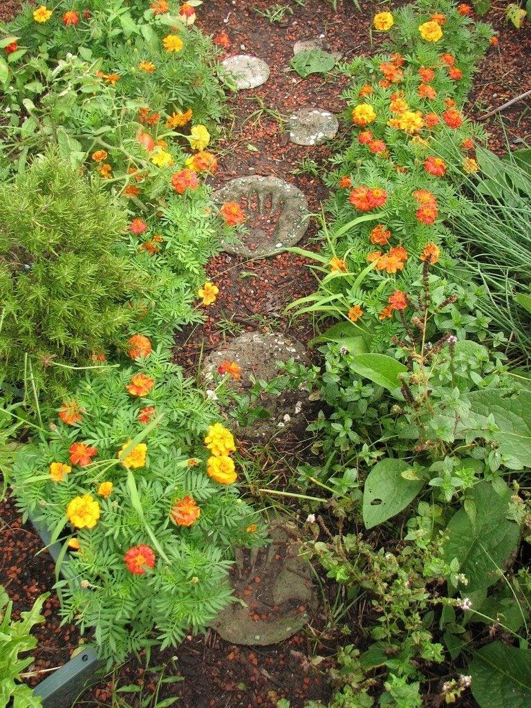 Well designed gardens tips for designing a garden - Tips for a lovely garden ...