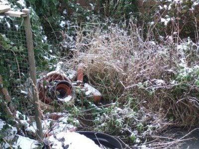 winter-snow-garden