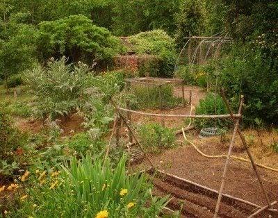 Superieur How To Design A Potager Garden
