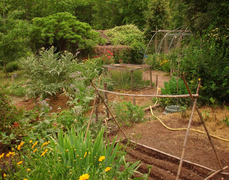 How To Design A Potager Garden Gardening Know