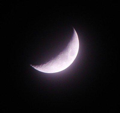 Moon {violet}