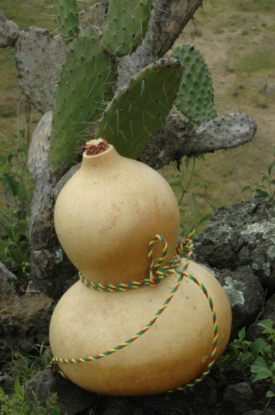 how to make a gourd canteen