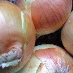 big-onions