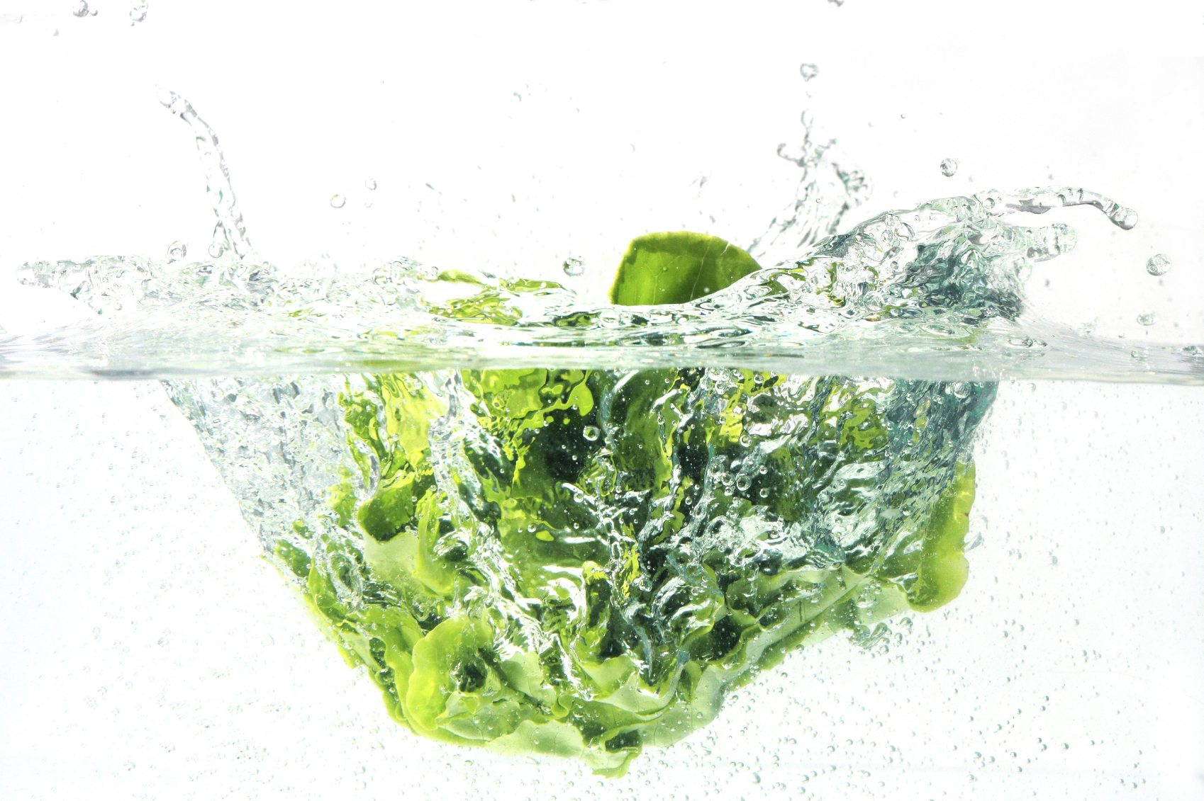 Tips for cleaning and storing lettuce Can a dirty house make you sick