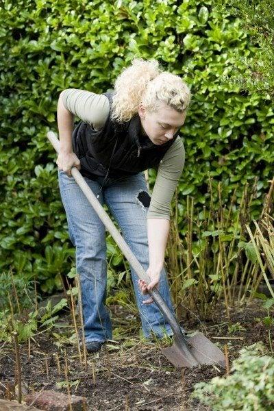 Hand Tilling Soil - The Double Digging Technique