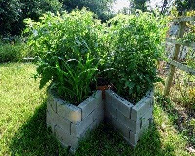 keyhole-garden-full