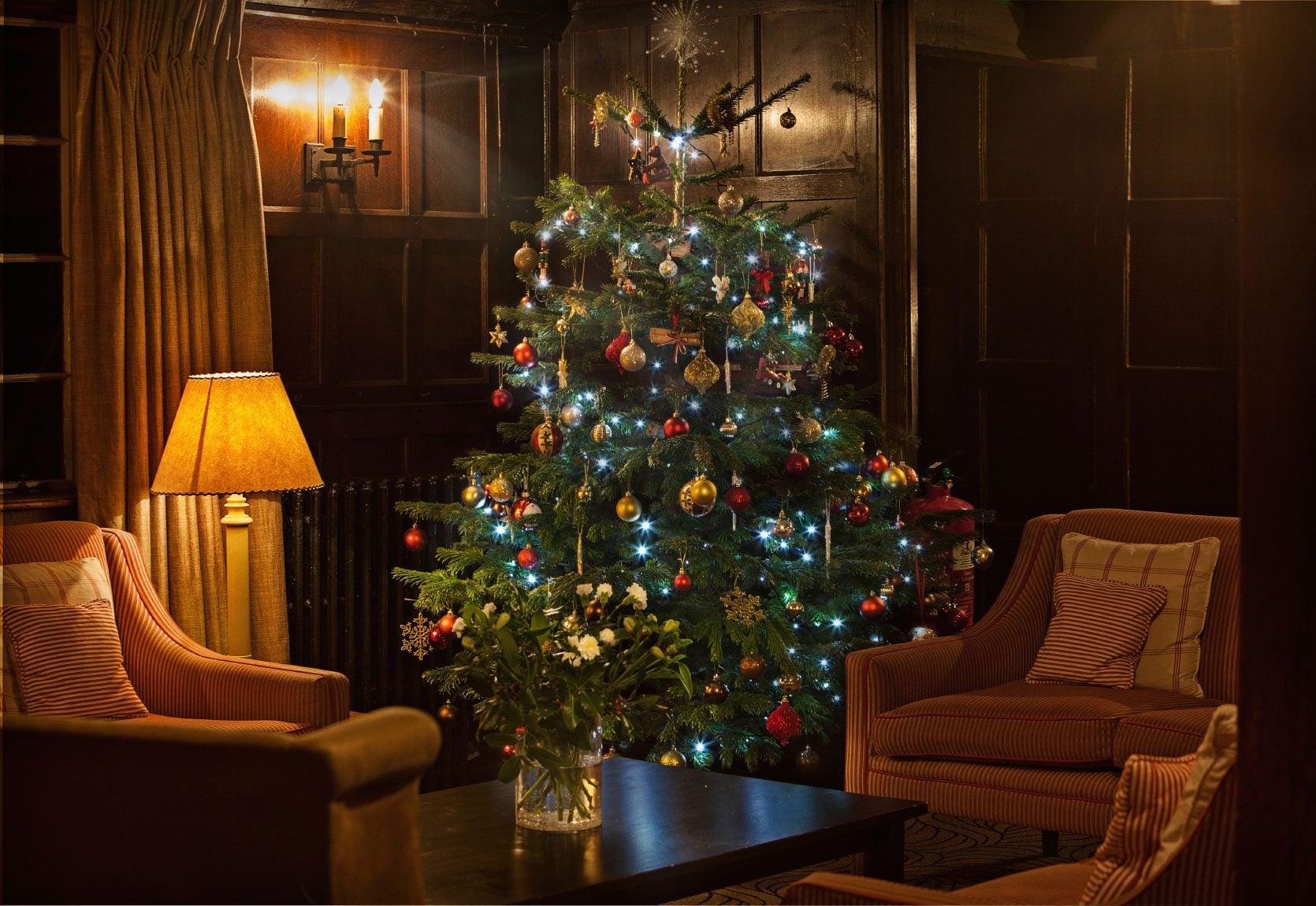 make a christmas tree last longer caring for a live. Black Bedroom Furniture Sets. Home Design Ideas