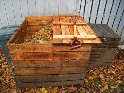 Composting basics: how does composting work