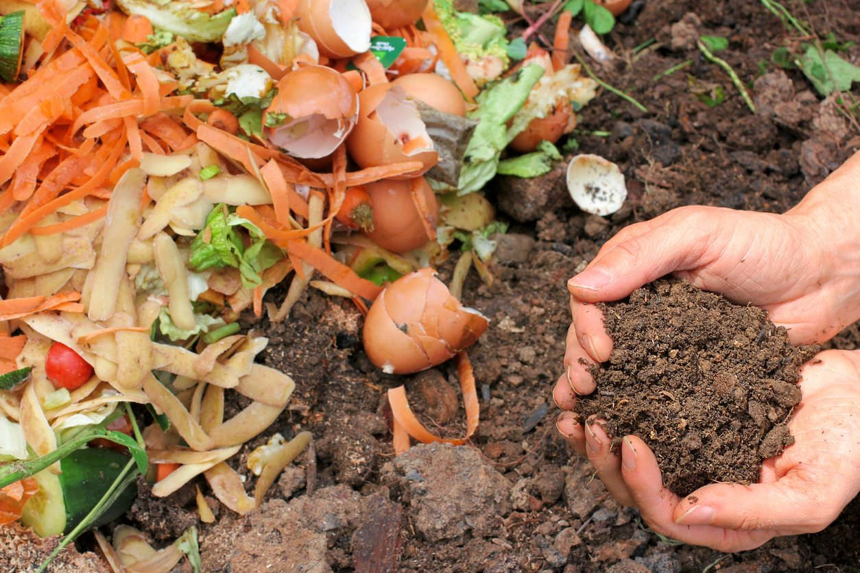 Composting Instructions: Why You Should Make Your Own Compost