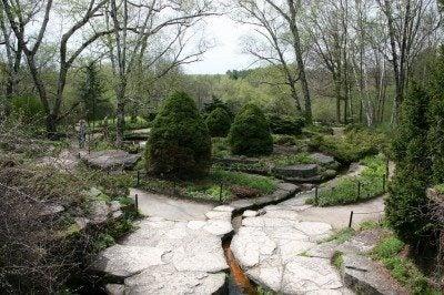 rock-garden-microclimate