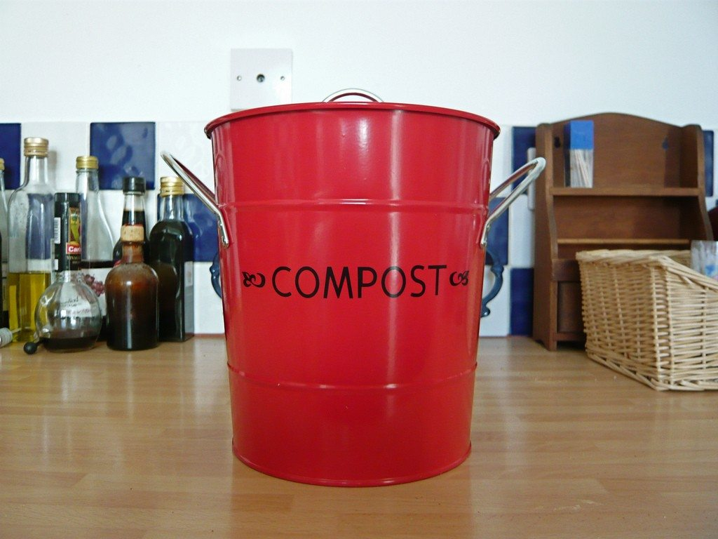 What To Compost You Can Put In A Bin