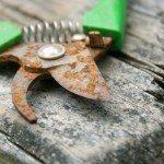 rusty-gardening-tool