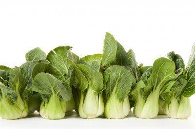 bok-choy-veggie