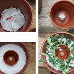 making-of-forsythe-pot-all2