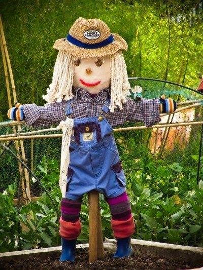 Kids and scarecrow gardens: how to make a scarecrow for the garden