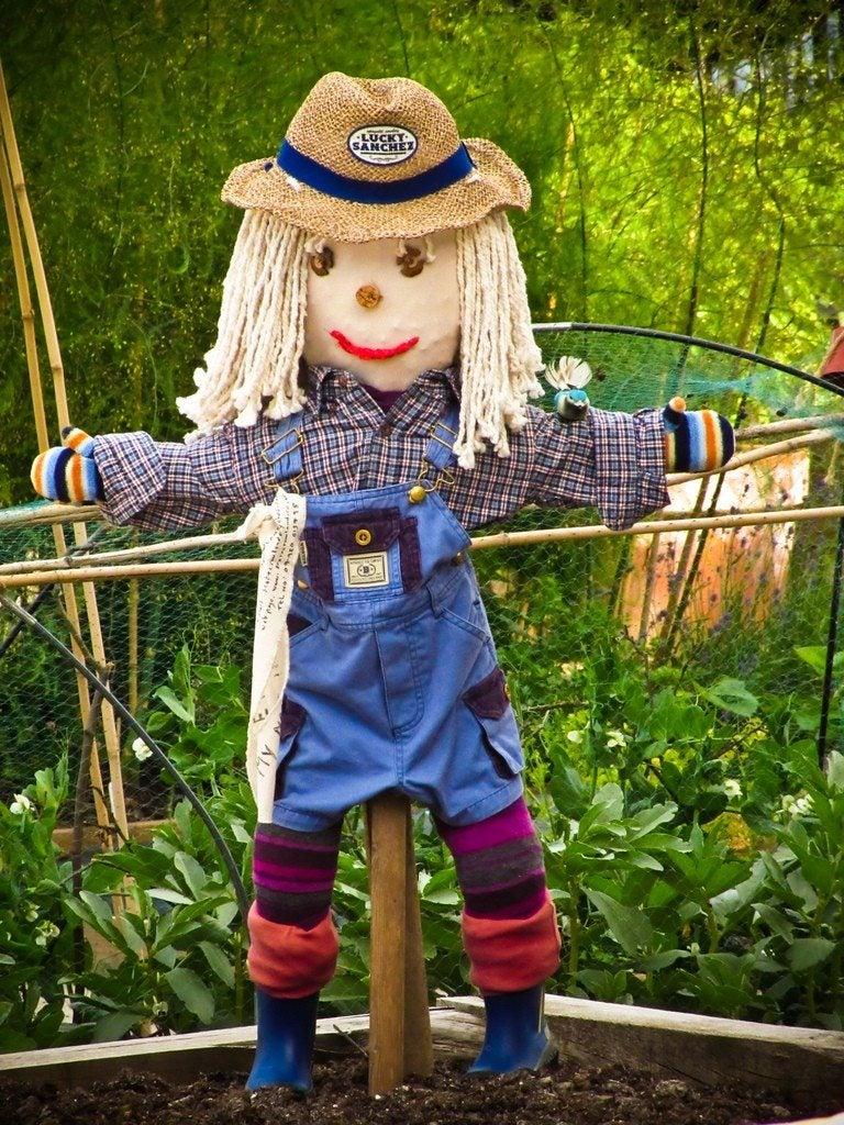 Scarecrows In The Garden - Creating Garden Scarecrows With ...