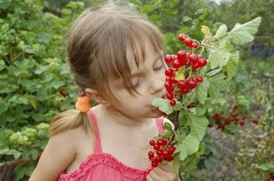 Special needs gardening – creating a special needs garden for children