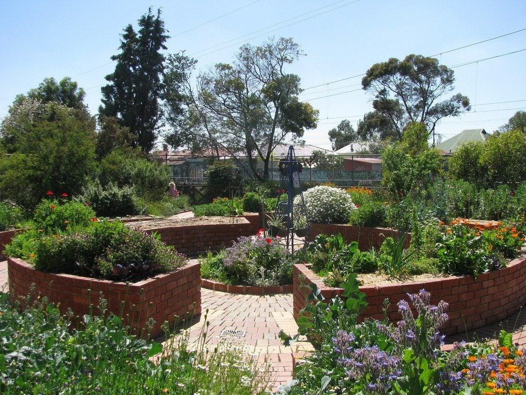Disabled gardener ideas how to create an enabled garden for Garden design ideas for disabled
