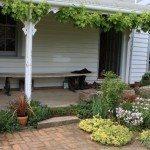 entryway-plants
