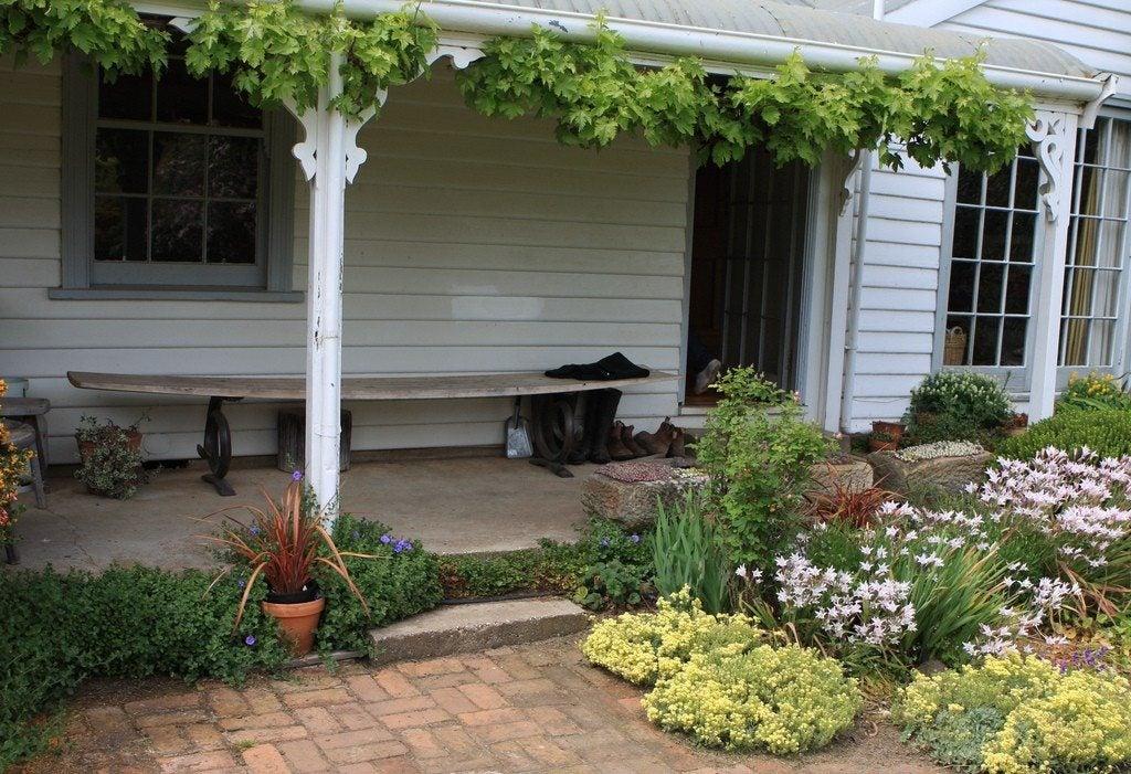 Foyer Plants : Front door garden design best plants for entryways