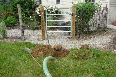 septic-tank-gardening