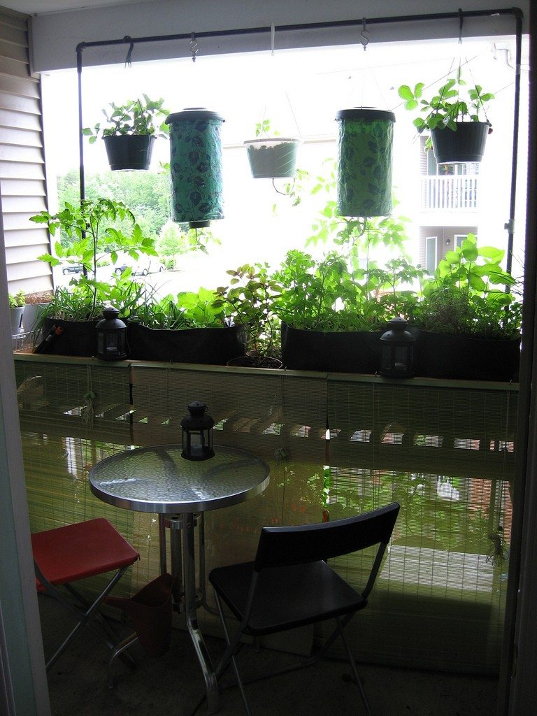 Balcony Garden Growing Using A Biointensive Garden Approach