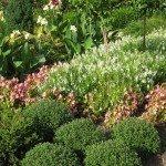 full sun garden