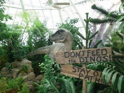 prehistoric-plants