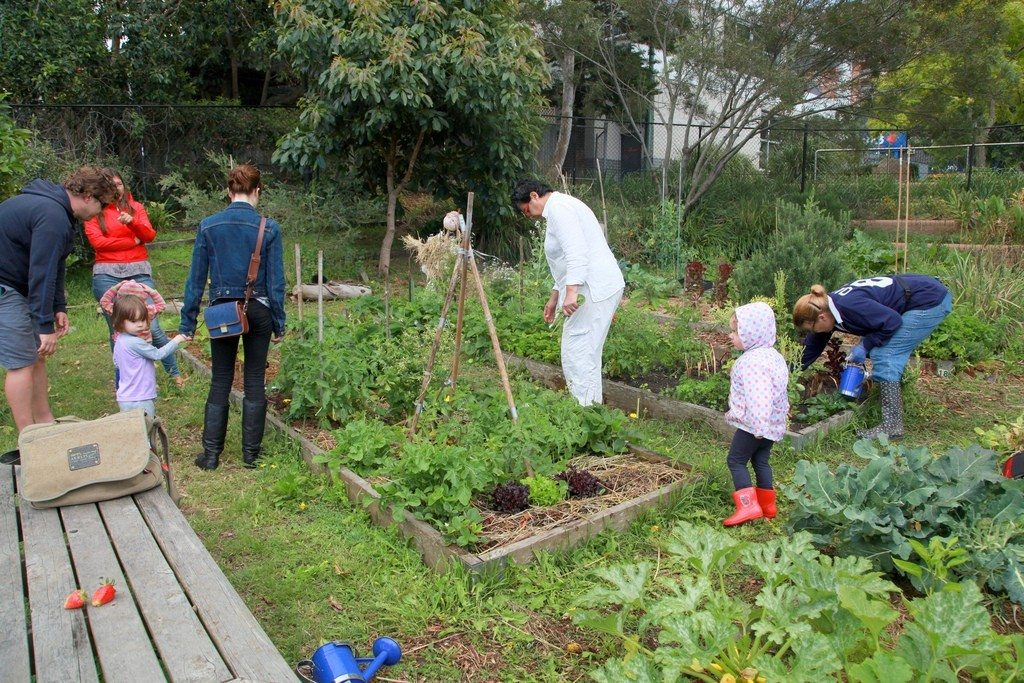 backyard gardening a solution to rising food prices Rising food prices and shortages make a garden the perfect solution food , survival seeds | 19 comments during the 1800s, before america transitioned from an agricultural to an industrial society, many americans grew their own food.