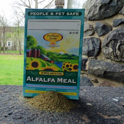 Fertilizing With Alfalfa Meal How To Use In The Garden