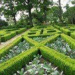 formal-garden