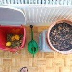 indoor-compost
