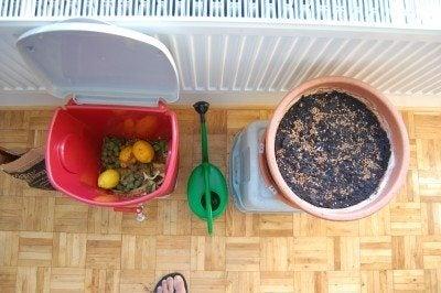 indoor-compost