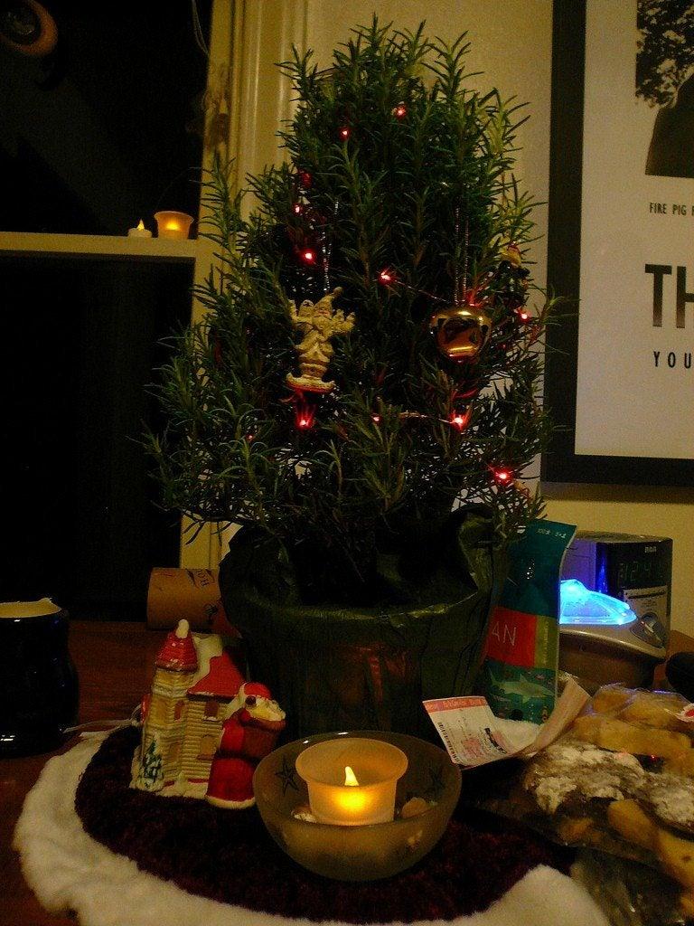 Christmas Tree Small Apartment