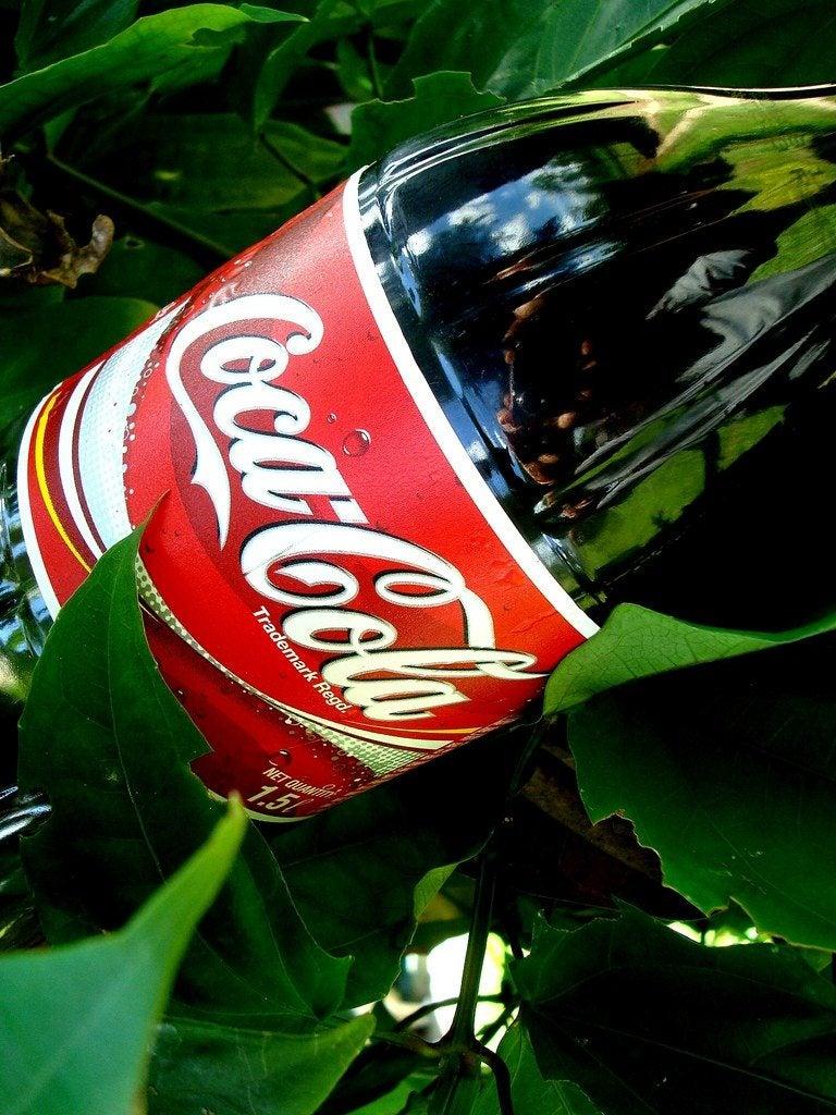 soda pop on plants