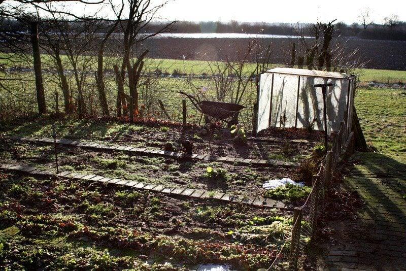 Winter prep for vegetable gardens tips on preparing a - Prepare vegetable garden for winter ...