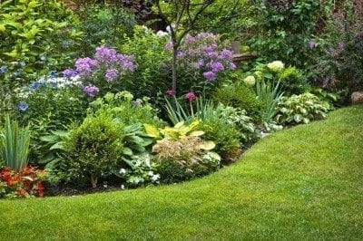 garden design: garden design with traditional rock and alpine