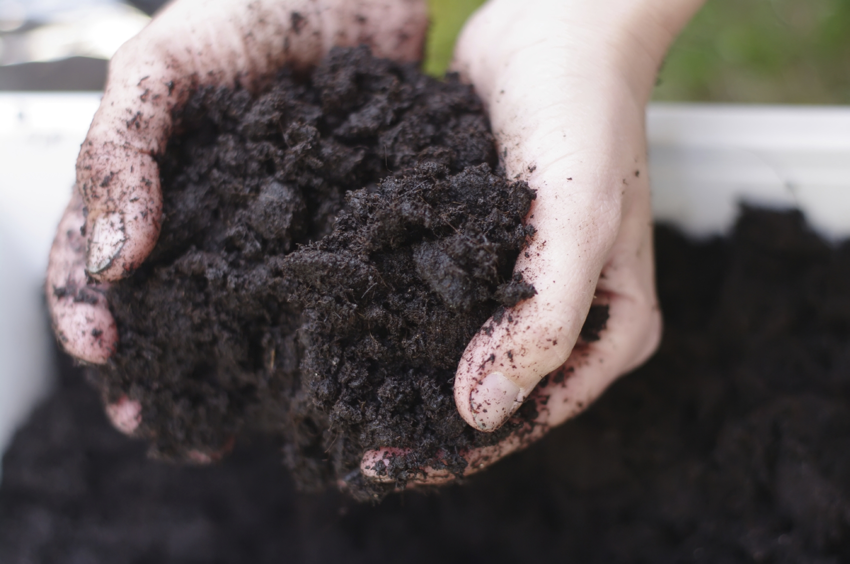 Learn How To Improve Soil For Gardens
