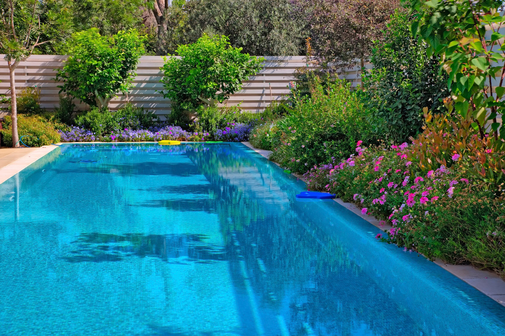 Poolside gardens what are some poolside plants Best plants for swimming pool landscaping